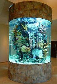 Round Acrylic Aquarium